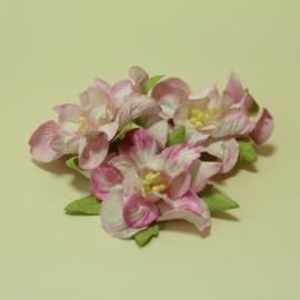 Гардении - розови, 5бр