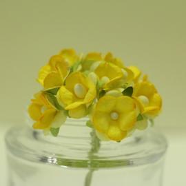 Декоративни цветенца - мини, жълти