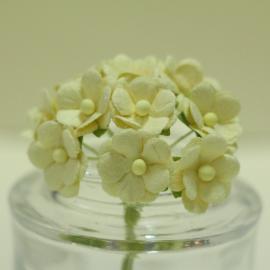 Декоративни цветенца - мини, бледо жълти