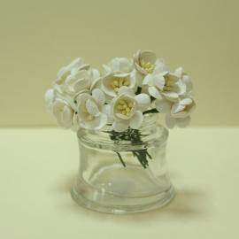 Черешов цвят - бял