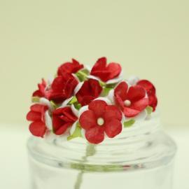 Декоративни цветенца - мини, червено и бяло